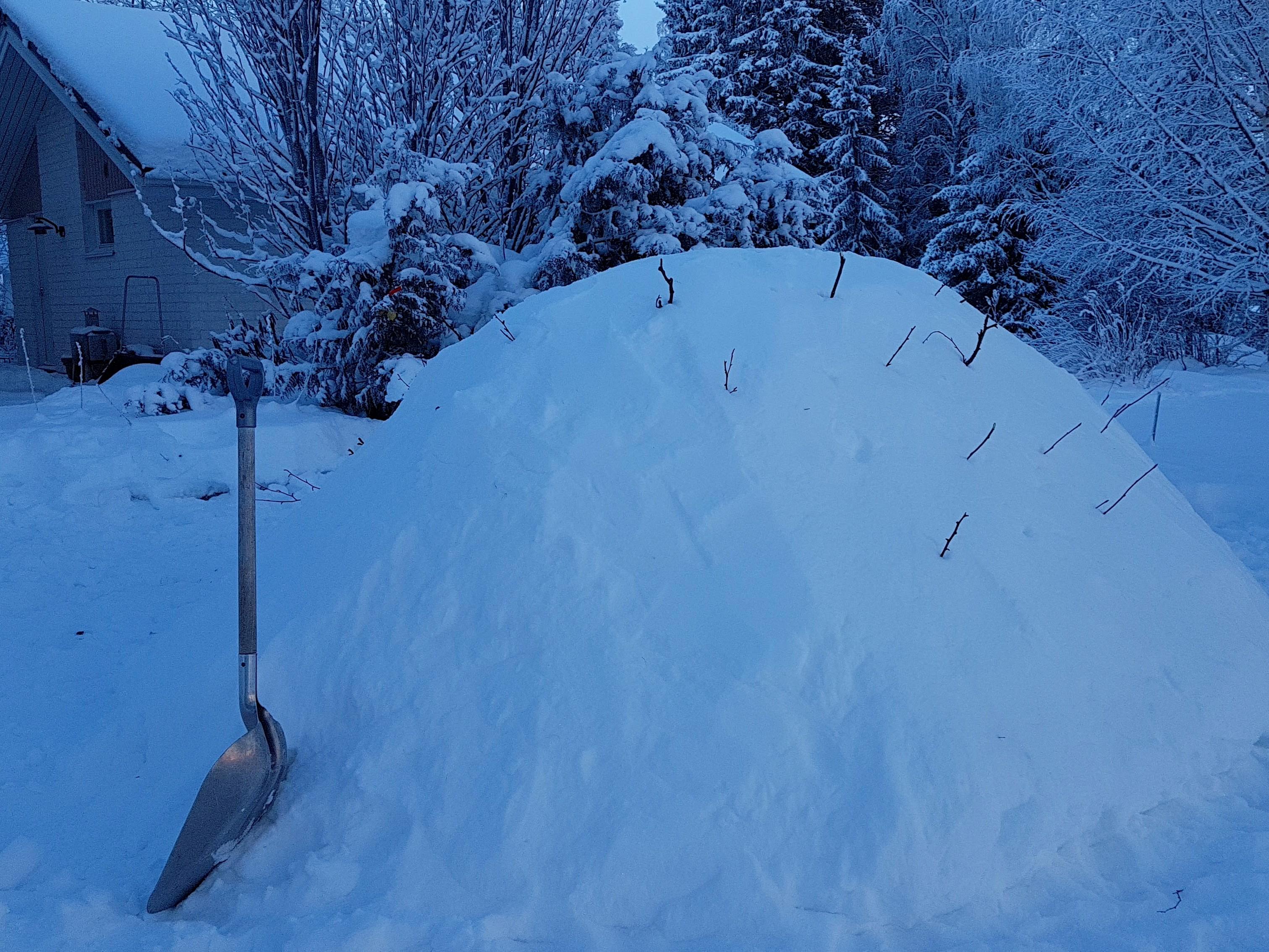 Lumikammin päälle asetetaan kepit