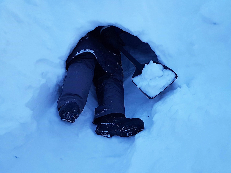 Lumikammin suuaukko kannattaa jättää matalaksi